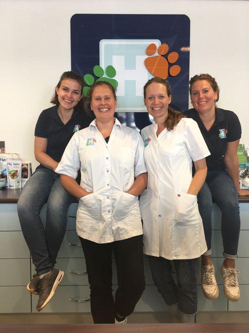 team dierenarts zandvoort