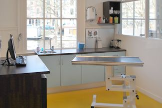 dierenarts-amsterdam-05