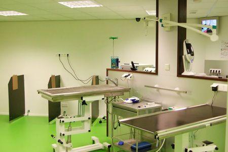 dierenkliniek-den-bosch-1