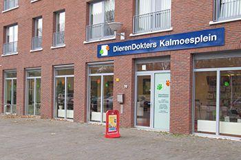 DierenDokters Kalmoesplein Eindhoven 11