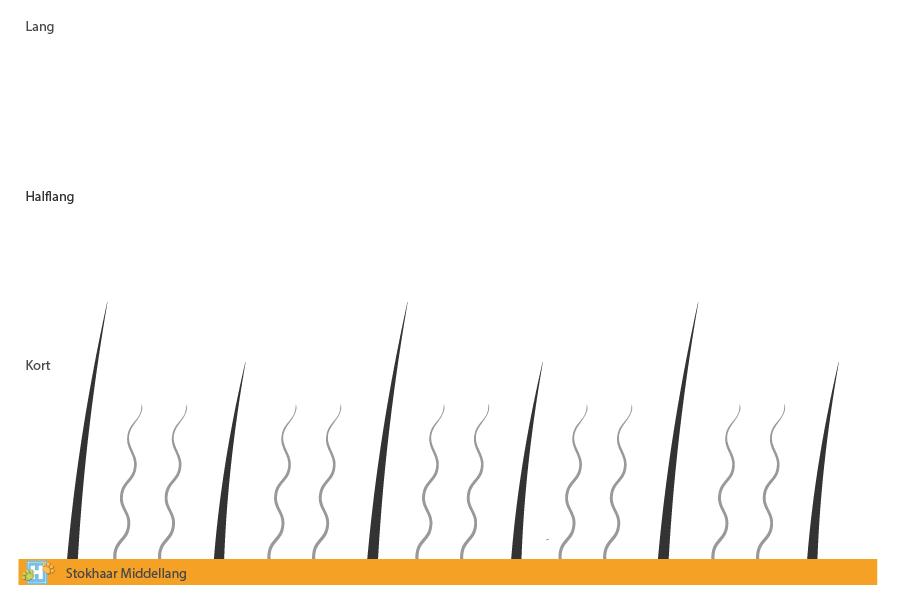 Stokhaar middellang
